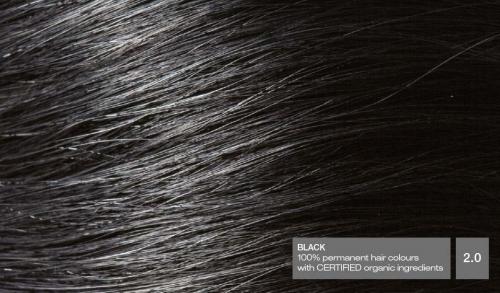 Hair20v5