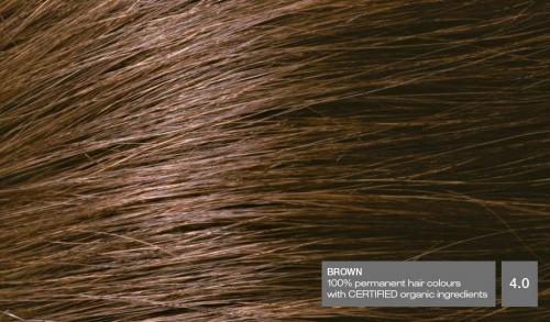 Hair40v2