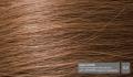 Hair53v2
