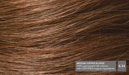 Hair634v2